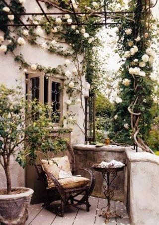 le salon pour dire bonjour en Passant - Page 11 Image121