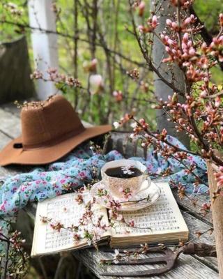 le petit salon de thé pour dire bonjour en passant  (archive) - Page 38 Image220