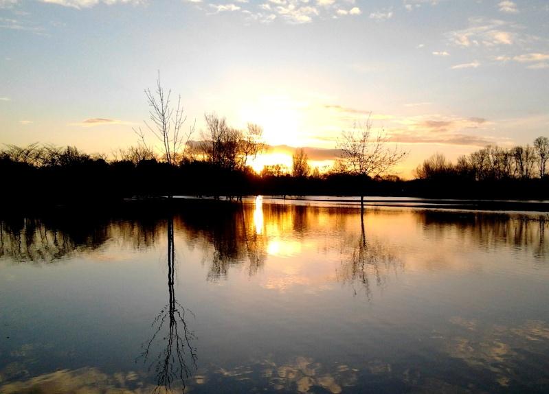 Photo du mois de Décembre 2011-121