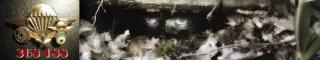 Denis ALLEX mérite mieux que le sort d' « otage inconnu ».  Ragus476