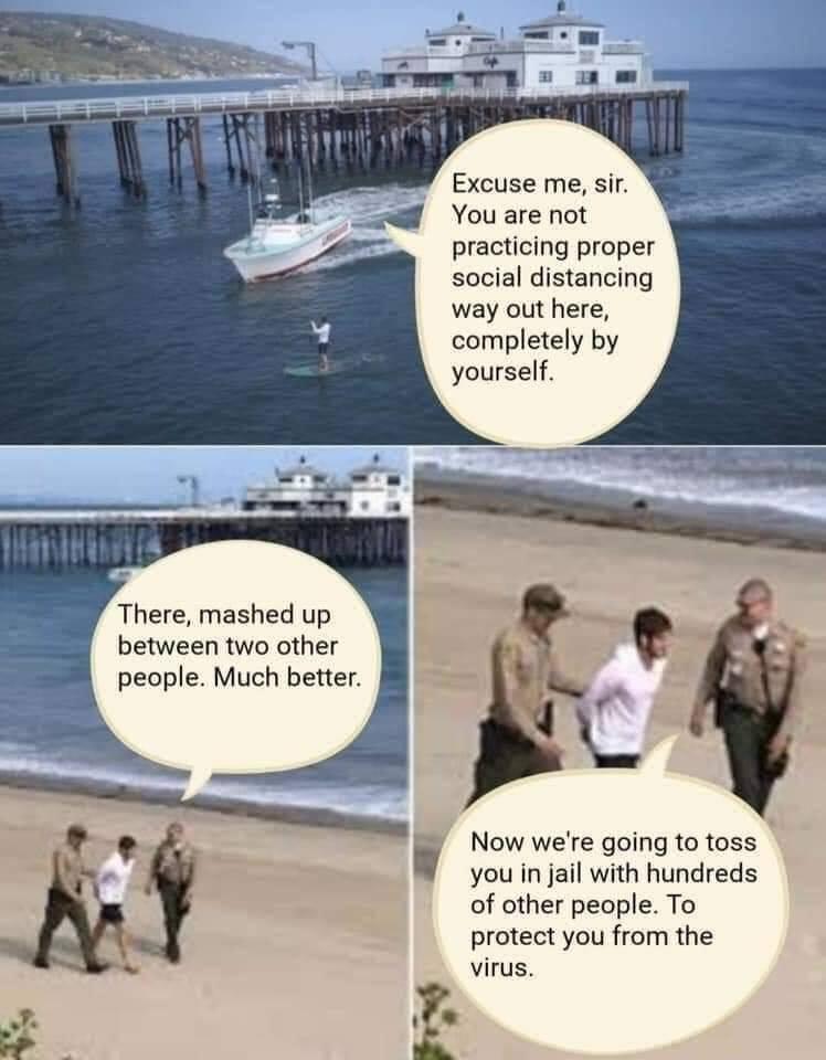 Cov-idiots!  Cali10