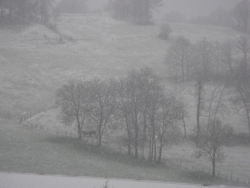 neige P4150010