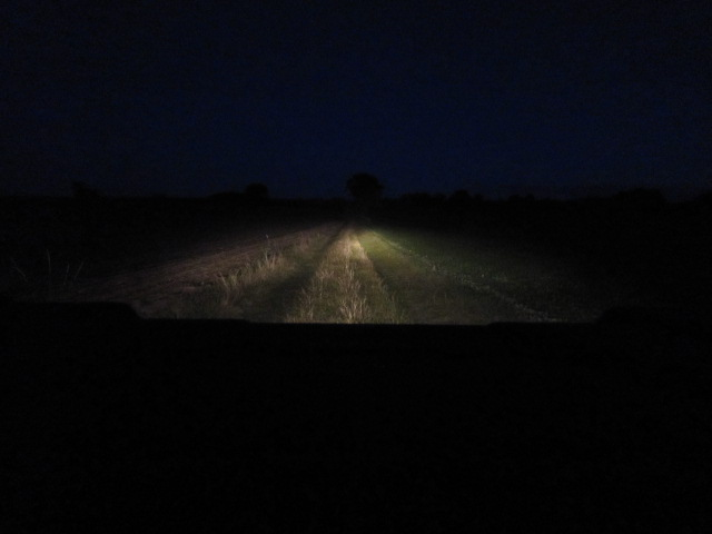 LED Leuchtmittel und Sportsman... Img_0013