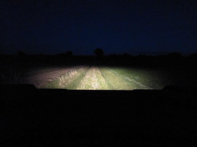 LED Leuchtmittel und Sportsman... Img_0016