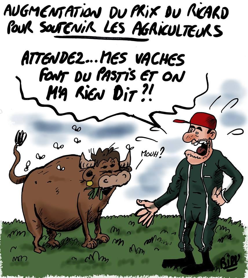 Humour en image ! - Page 18 Ricard10