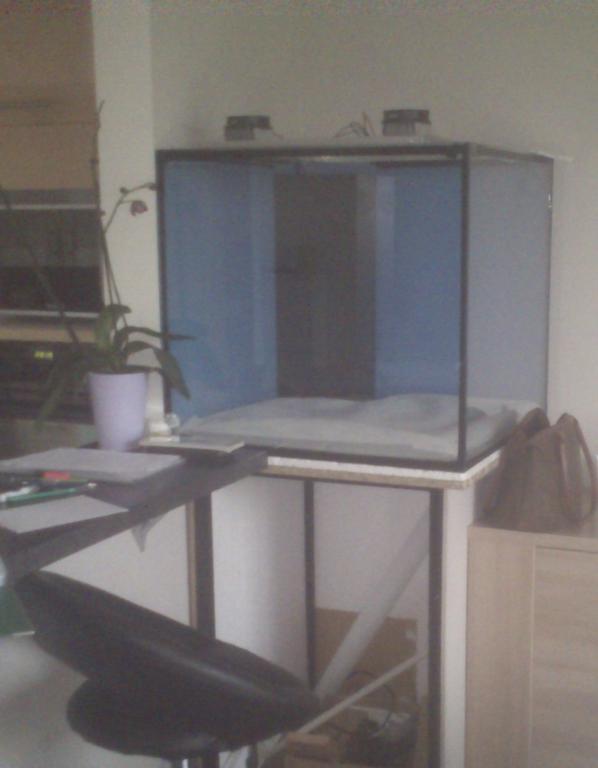 Préparation de mon 330L Cubique Dsc_0010