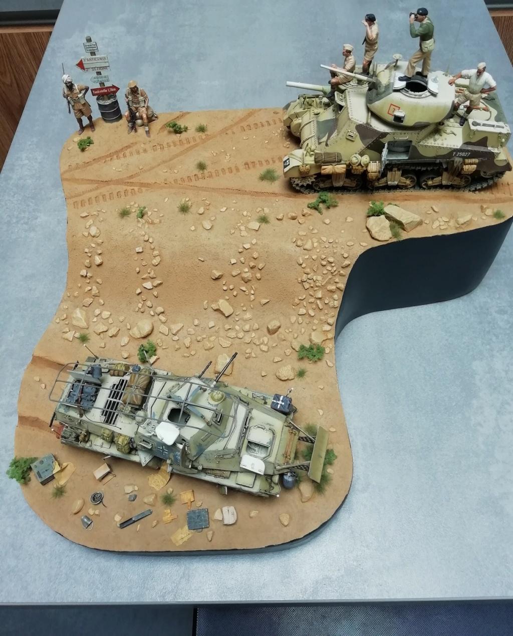 2ème bataille d'El-Alamein ... Le début de la fin pour l'Afrika Korps - Page 13 Img_2221