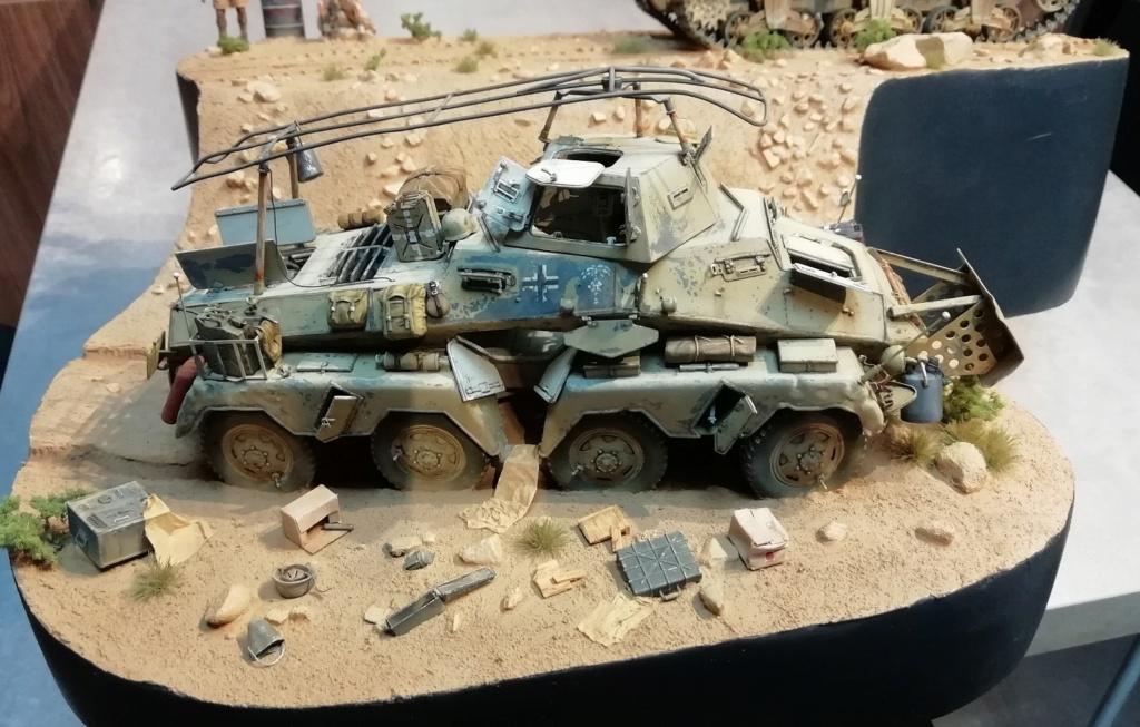 2ème bataille d'El-Alamein ... Le début de la fin pour l'Afrika Korps - Page 13 Img_2223