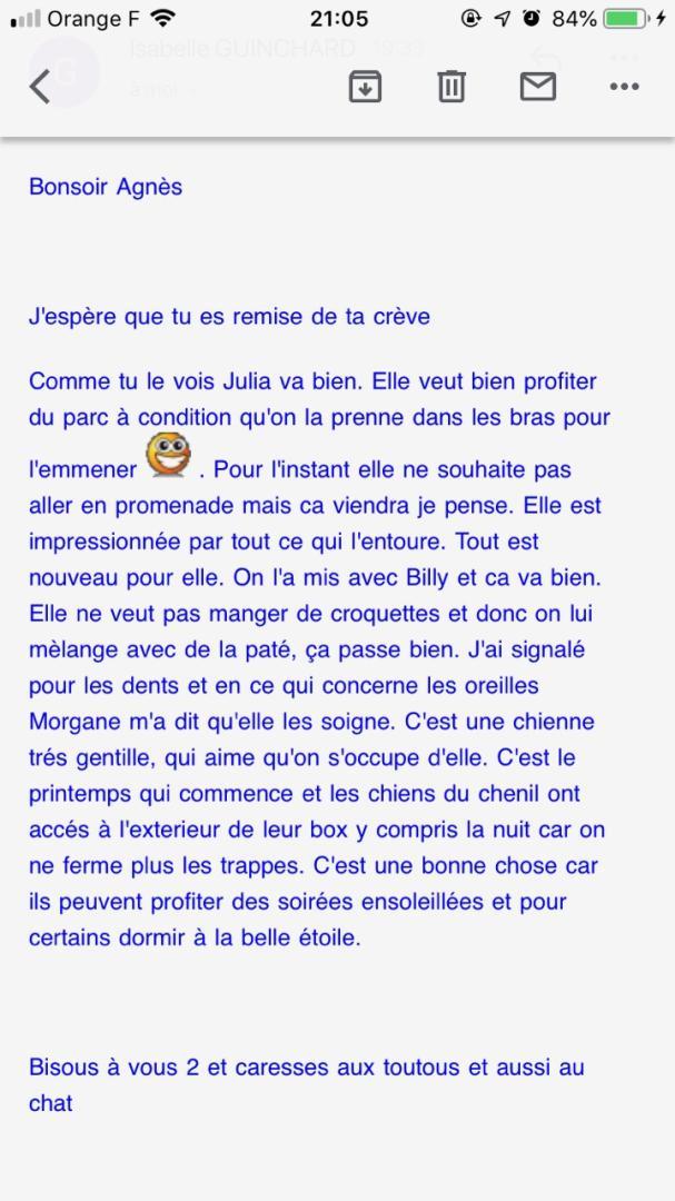 JULIA, F-X, née 2013 - 17 kg - Adorable (BELLA) Prise en charge SPA PONTARLIER - Page 3 Img_7810