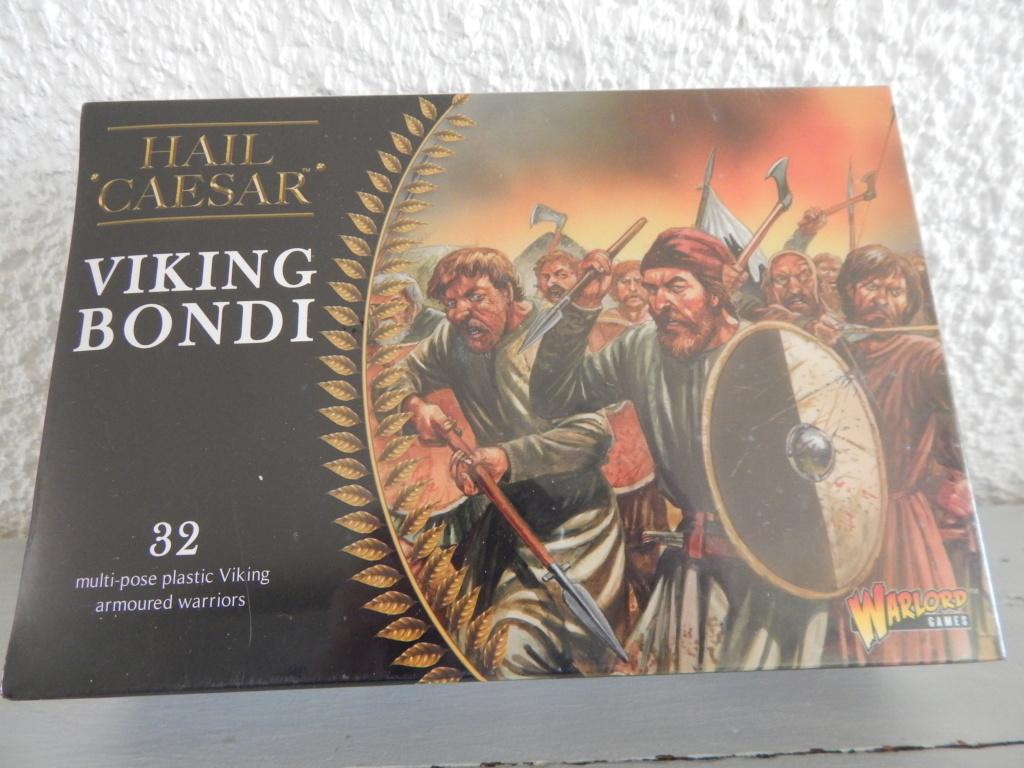 A VENDRE Guerriers Vikings (Bondis) Dscn7413