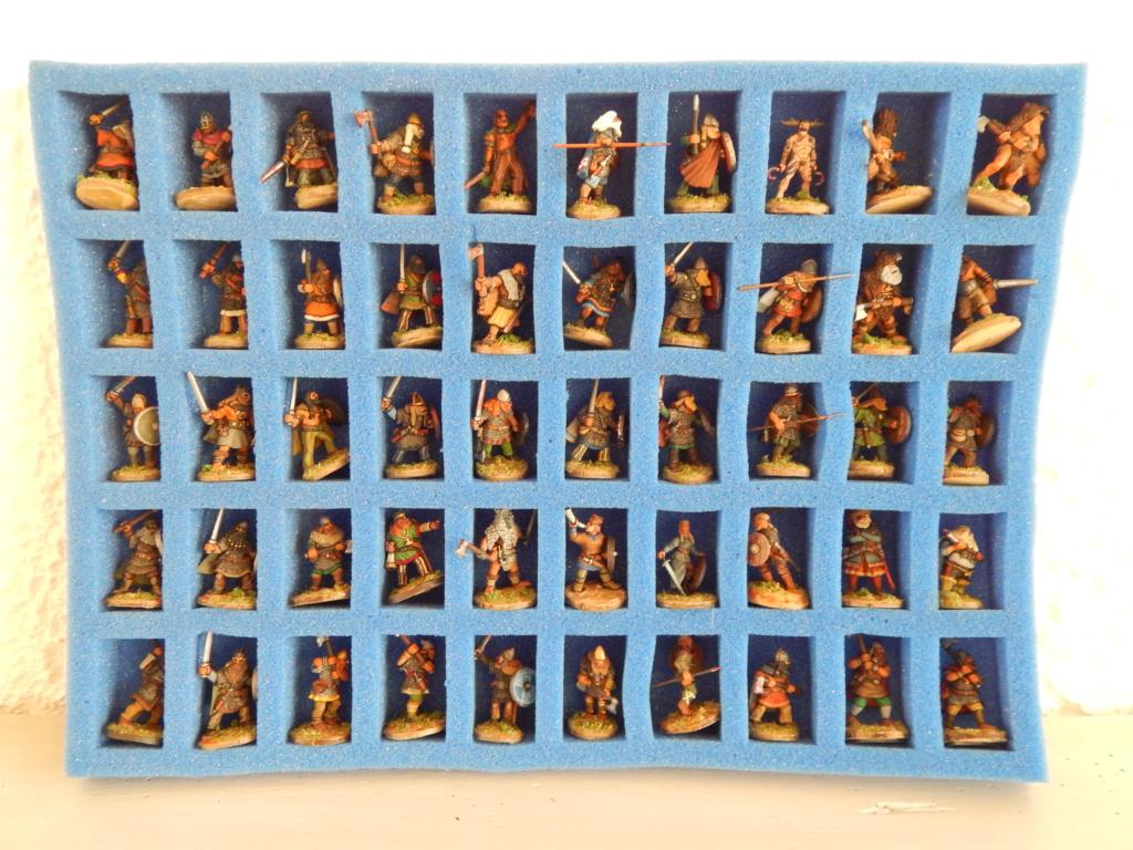 VENDU Figurines pour SAGA âge des Vikings  Dscn8310