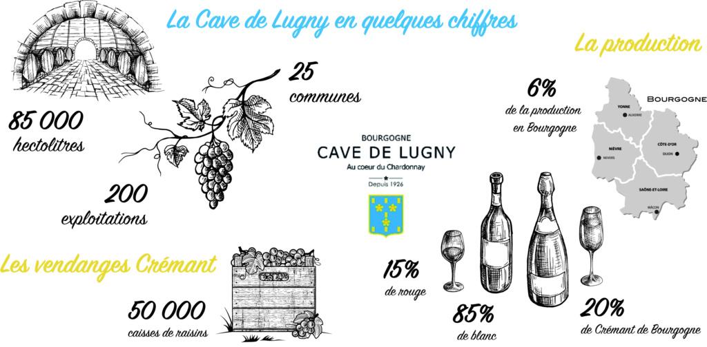 Les vendanges 2018 débutent à la Cave de Lugny Infogr10