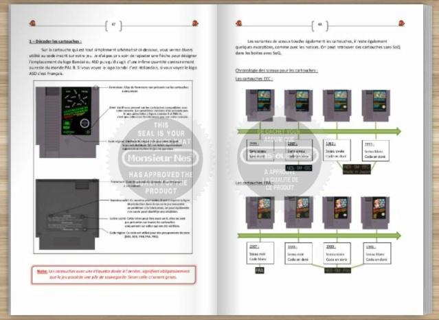 Je sors mon livre sur le NES Europe Captur14