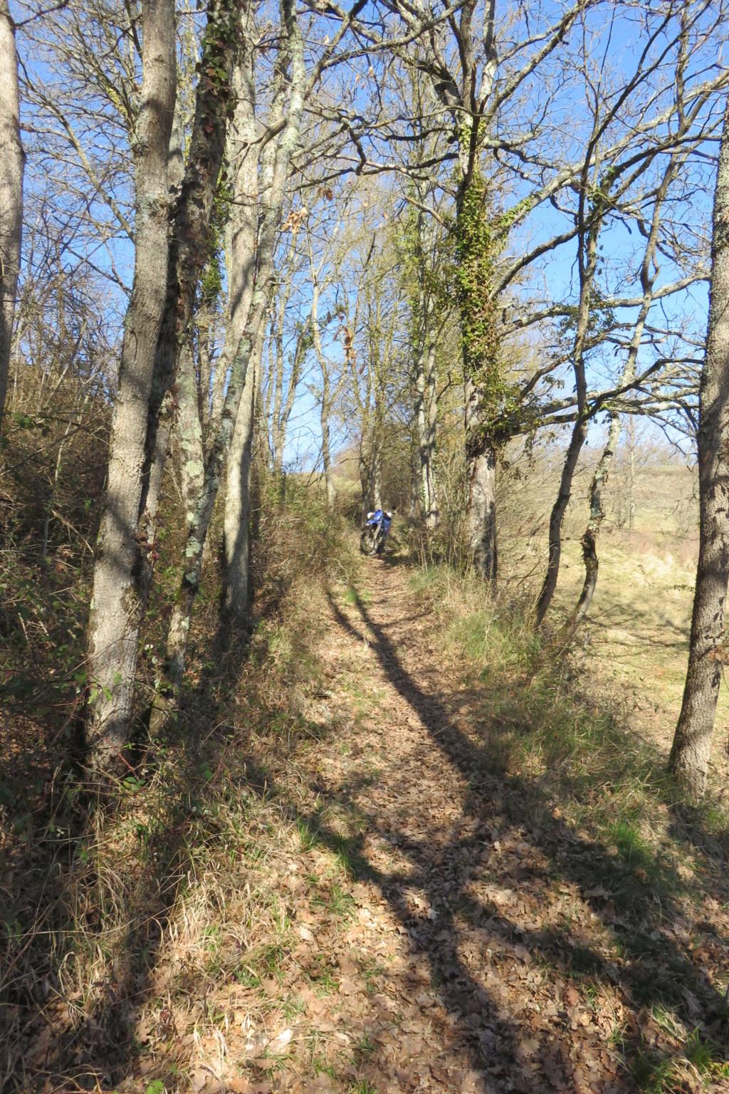 entre l'aude et l'Ariège Img_4717