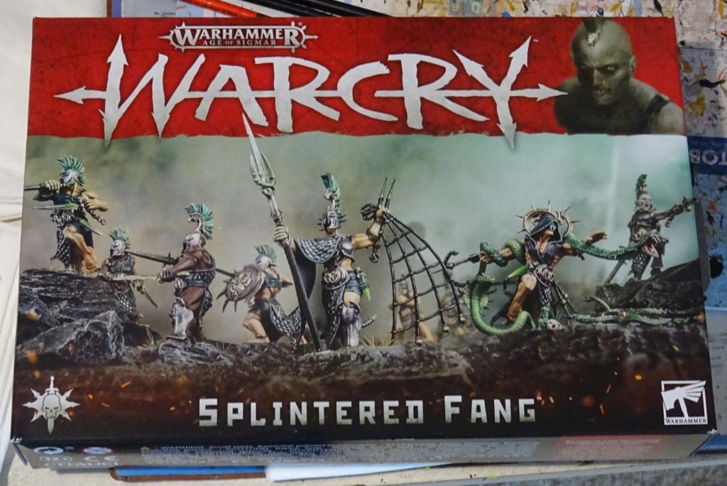 Warcry chez Warhammer/Games Workshop, la version de Razorspoon Splint12