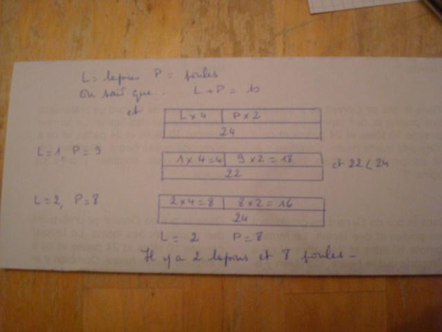 Mathématiques : «Le niveau a dégringolé», assure Cédric Villani - Page 6 Dsc08113