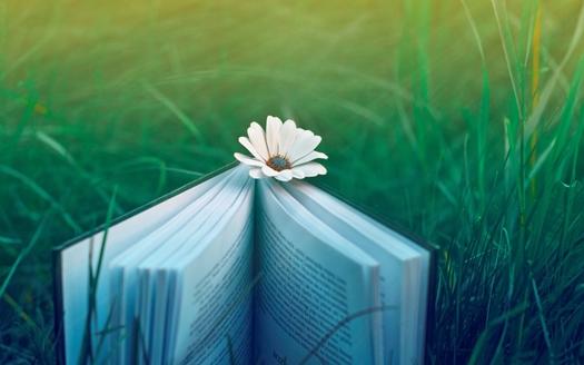 Zašto je čitanje dobro za nas? 010