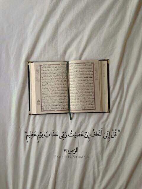 اقرأ معنا قرآن كريم Eeeoee14