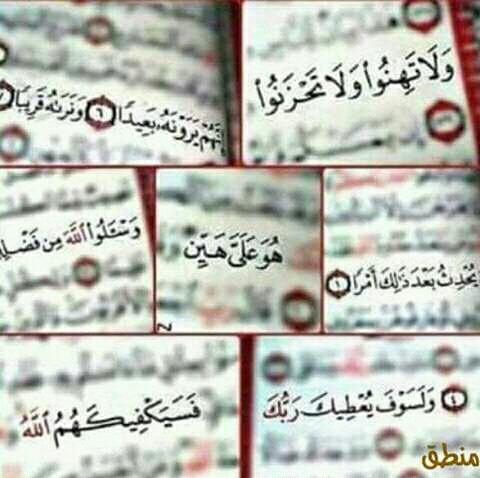 تطبيق تحفيظ القرآن الكريم بسهولة لطلاب الأزهر الشريف Eeeoee31