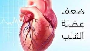 علاج ضعف عضلة القلب Eeeoeo36