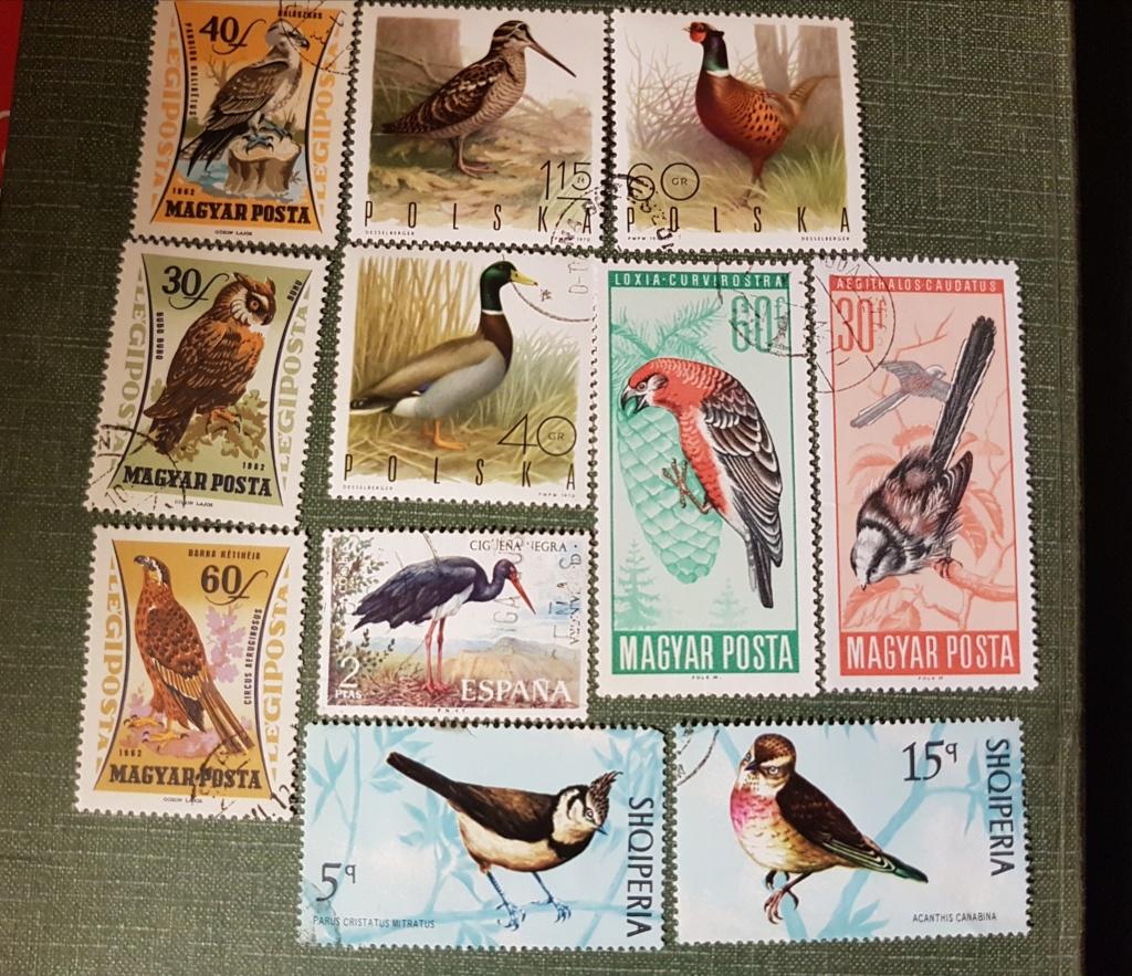 ¡¡Pájaros en SELLOS!! 20200412