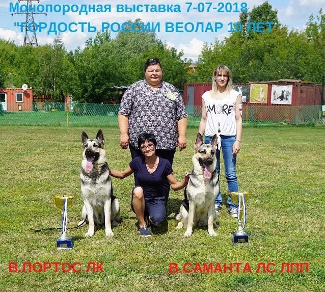 ВОСТОЧНО-ЕВРОПЕЙСКАЯ ОВЧАРКА ВЕОЛАР САМАНТА - Страница 7 Img_8012