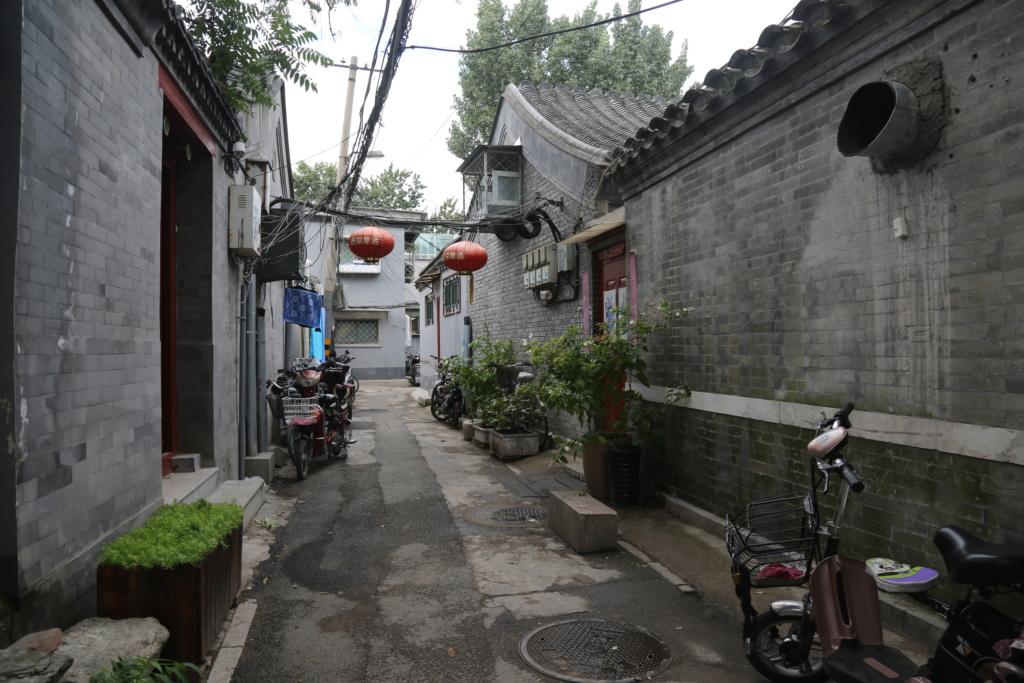 Astérix en Chine (BD à paraître prochainement ?) 6h8a4210