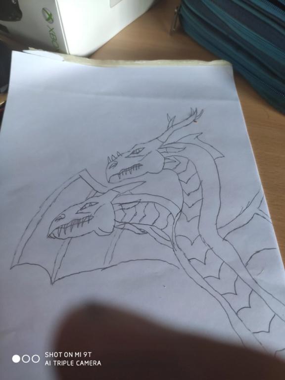 Galeria de practicas Dragon11