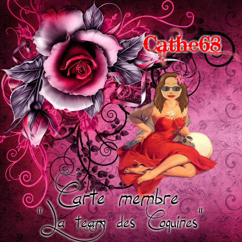cartes membre de milou, cathe et severine Carte203