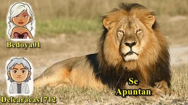 INSCRIPCIONES DE TORNEO DE TUTE PAREJAS DIA 2-9-18 A LAS 22+15 EN NUESTRA SALA PRIVADA OS ESPERAMOS  Anigif14