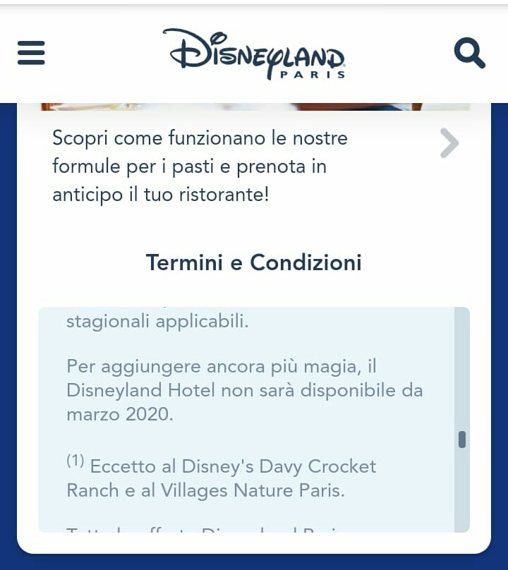 Disneyland Hotel ***** 45825610