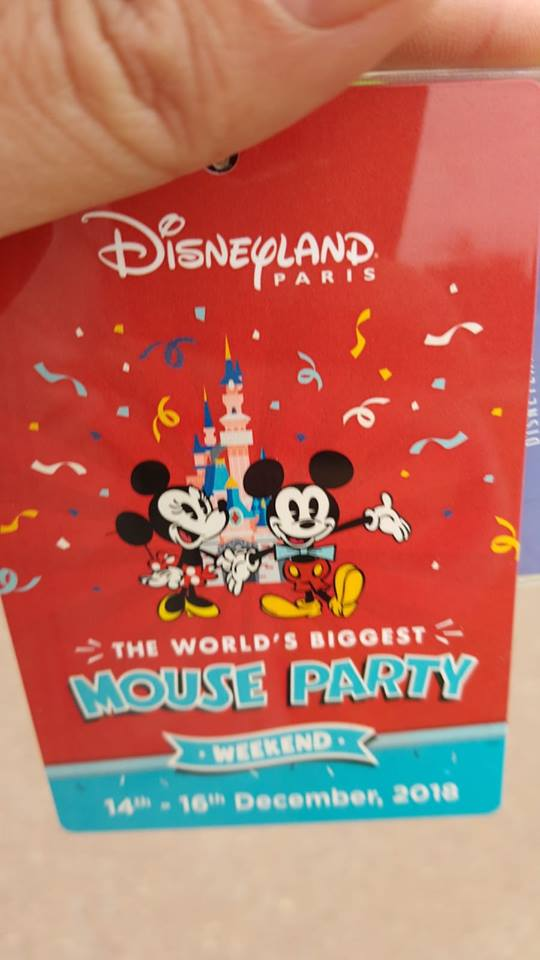 2018 - Mouse Party Weekend 48367210