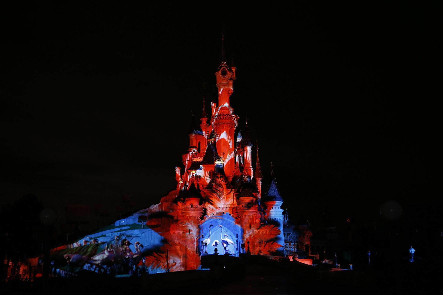 2019 - Disneynature Dn00210