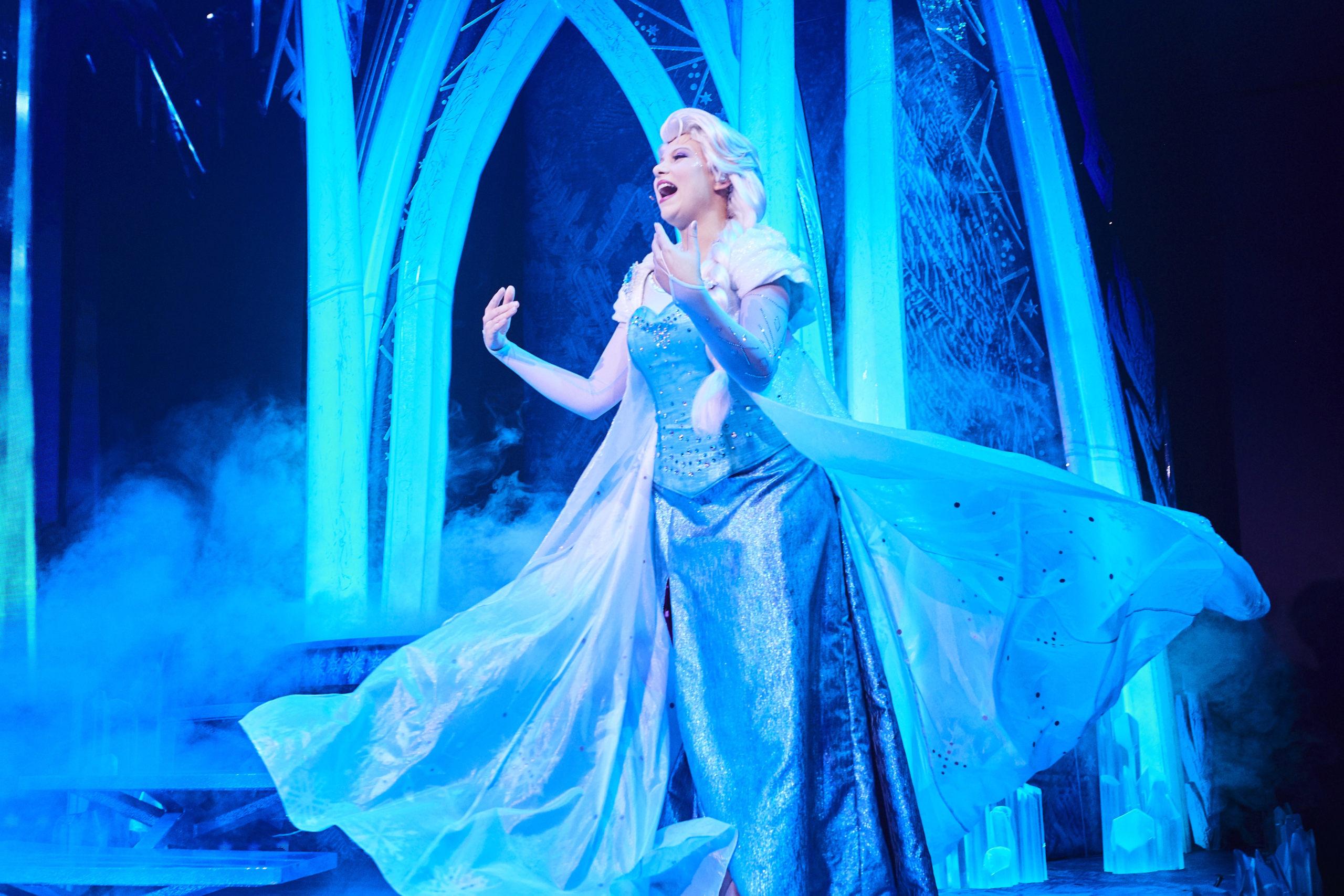 2019 - Animation Celebration dal 17 novembre Frozen12
