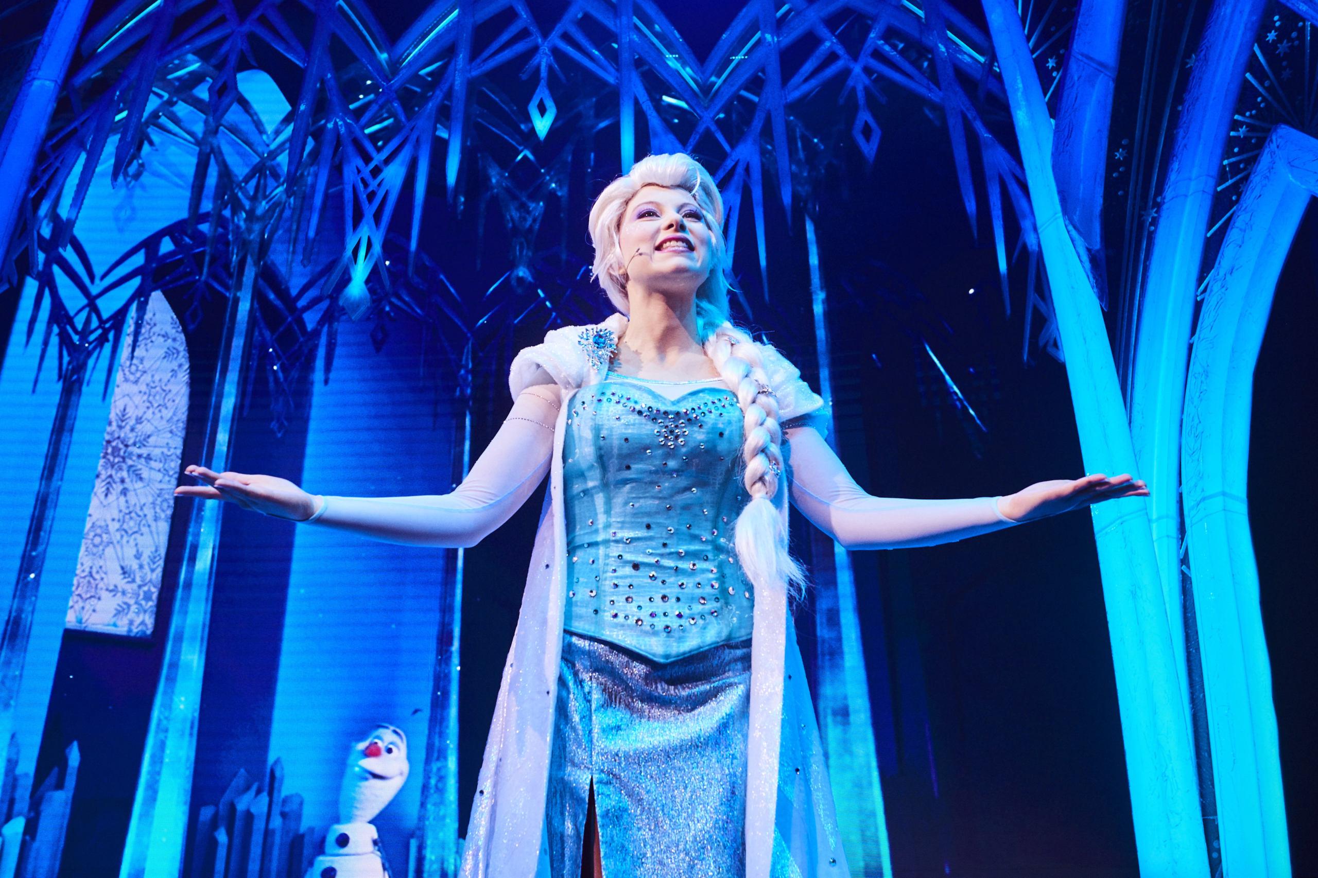 2019 - Animation Celebration dal 17 novembre Frozen13