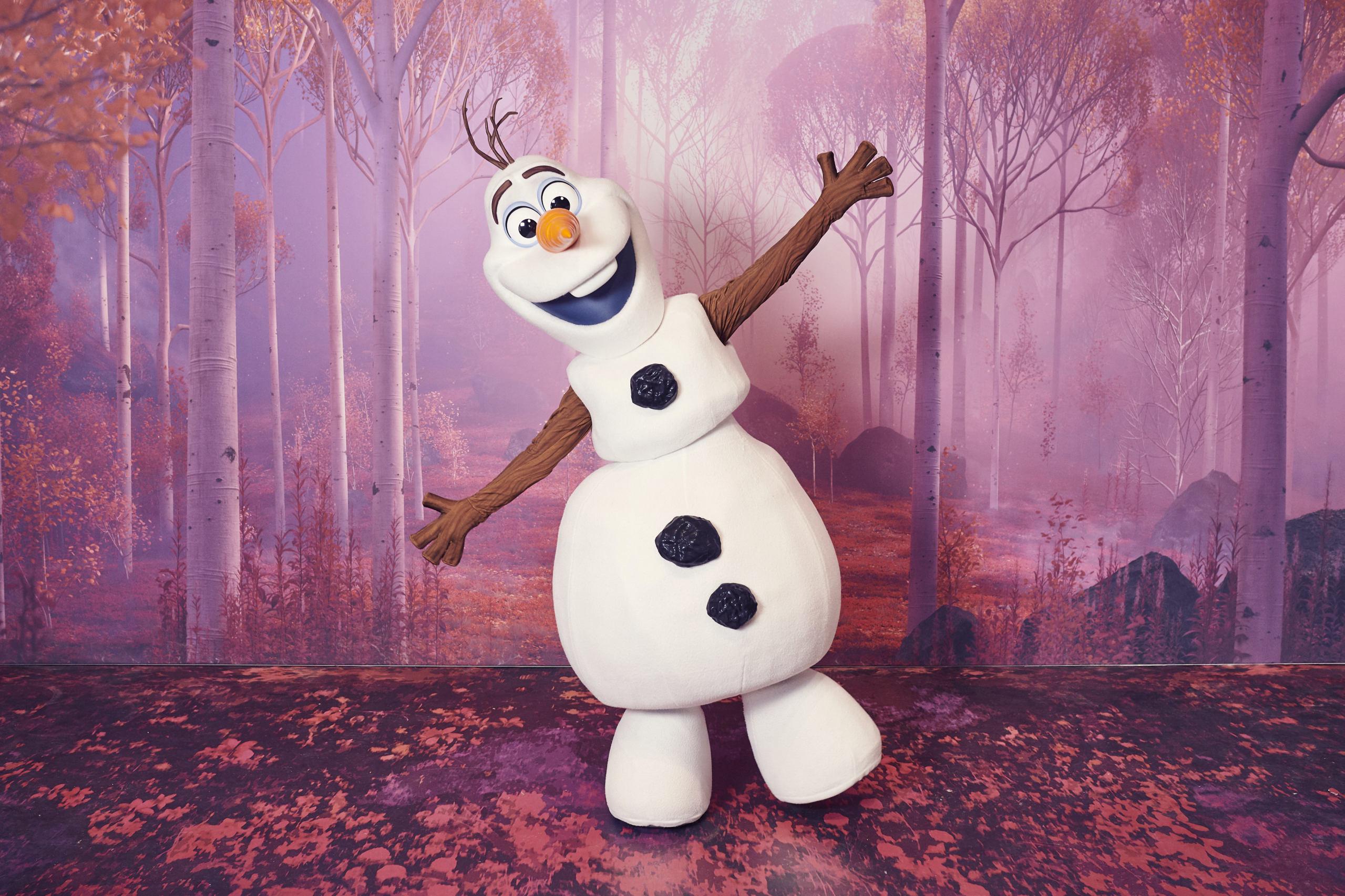 2019 - Animation Celebration dal 17 novembre - Pagina 2 Frozen26