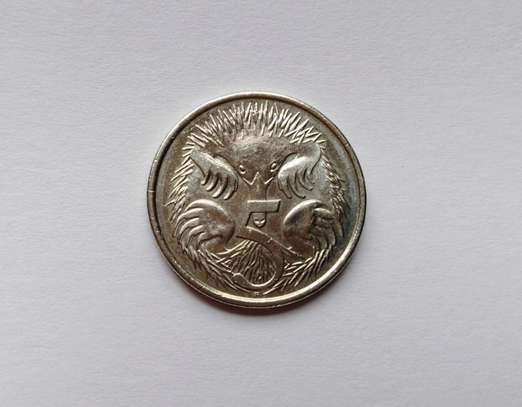 ¡¡Safari!! 5 centavos 2015, Australia Photo_19