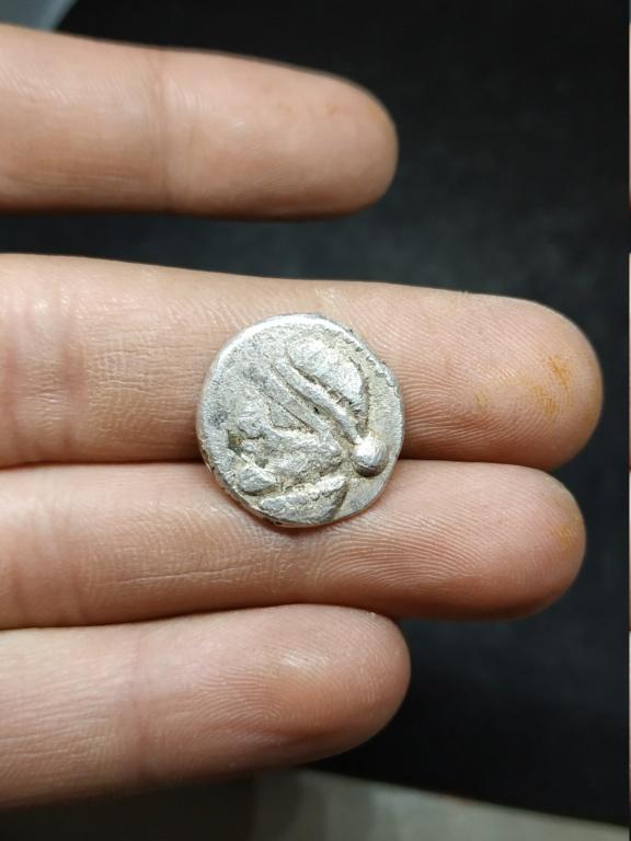 Moneda recreacionista. Reproducción Img_2010