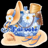 Vote concours fête de la Saint Jean  0_9c5710