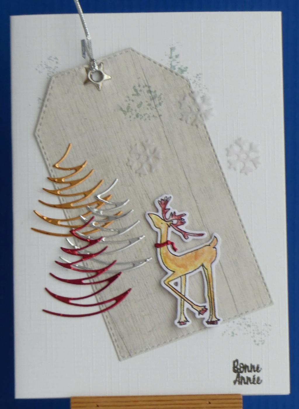 CC attend Noël (mis à jour 24-12) P1050410
