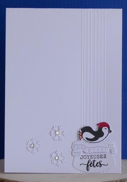 CC attend Noël (mis à jour 24-12) - Page 2 P1050513