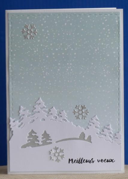 CC attend Noël (mis à jour 24-12) - Page 3 P1050610