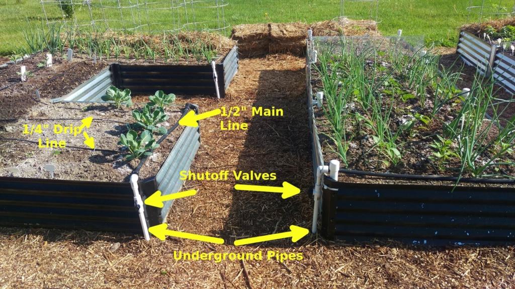 School Garden & Irrigation Anotat10