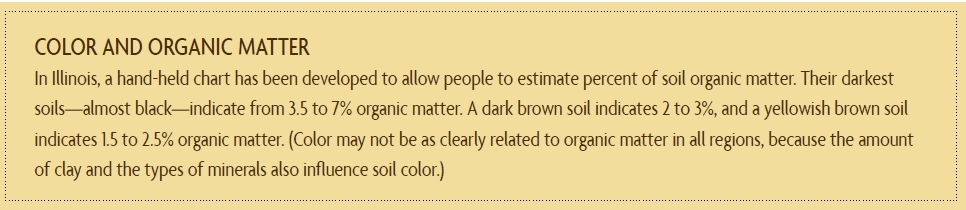 Square Foot Gardening - portal1 Color_10