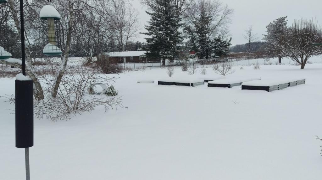 Winter Gardens Imag3810