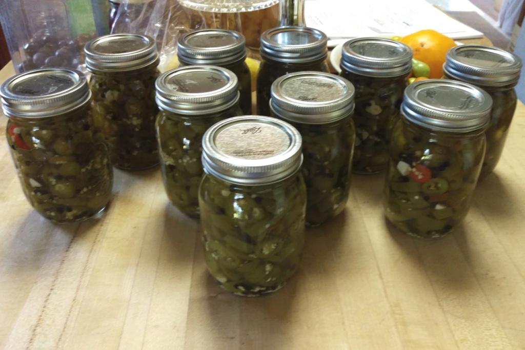 Jalapeños - Time to start canning! Jalape15