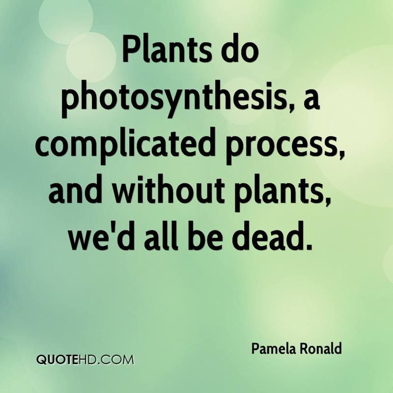 Famous Gardening Quotes - Page 3 Pamela10