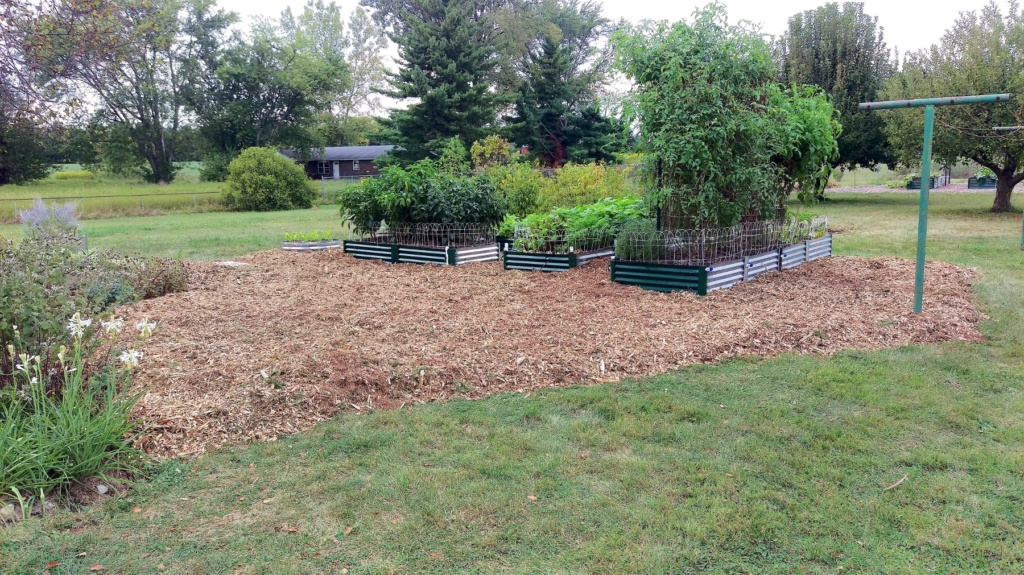 New Mulch Between Beds Raised18