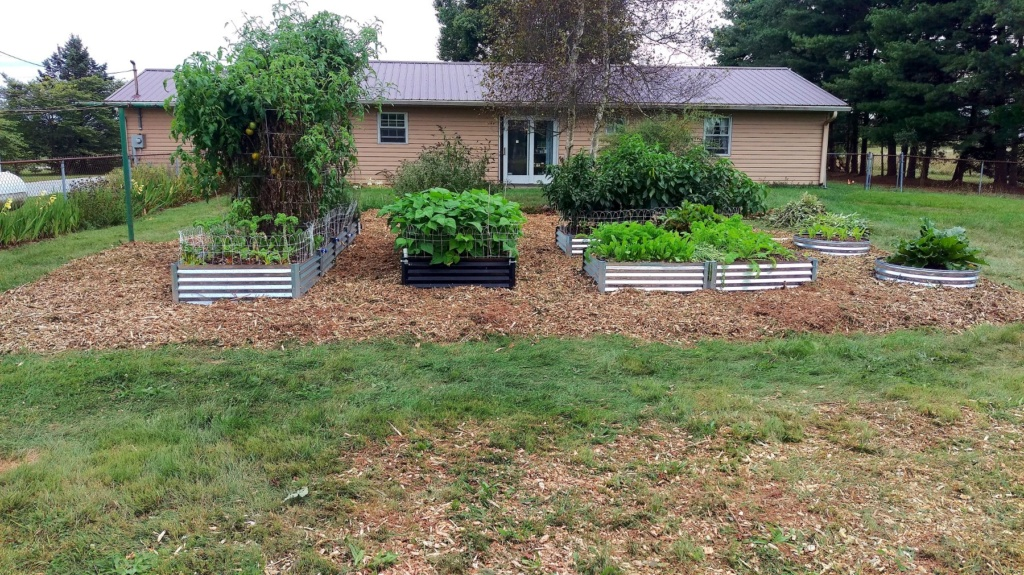 New Mulch Between Beds Raised19