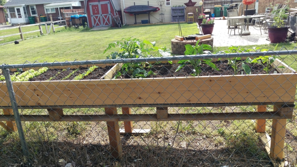 Table Top Raised Bed from Pallets Raised35